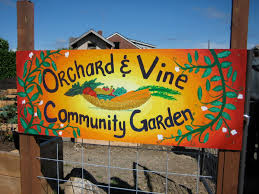 imagesbest orchard and vine